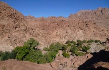 Egypt Sinai Mountain Trekking and Hiking